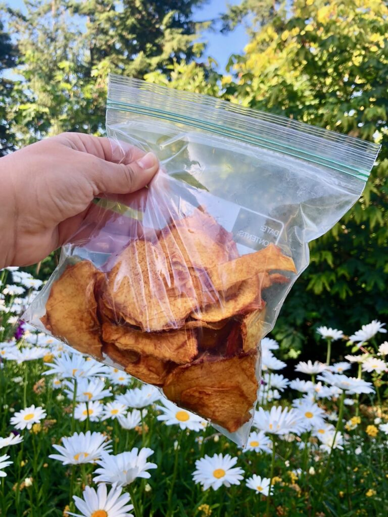 dehydrated peaches in baggie